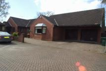 3 bedroom Detached Bungalow for sale in Hatchell Drive...