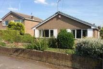 Detached Bungalow to rent in Dean Close, Sprotbrough...