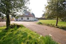 Detached Bungalow for sale in Holme-next-the-Sea