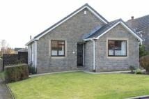 Bungalow in Haigh Close...