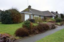 2 bed Semi-Detached Bungalow to rent in Claverham Way, Battle...