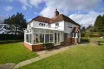 Detached property to rent in Netherfield, East Sussex