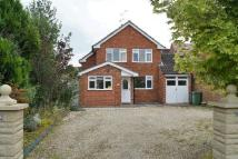 Detached house for sale in Hallow Road, St Johns...