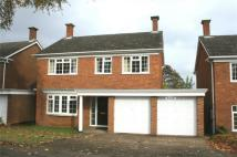 Detached property to rent in Conyngham Road...