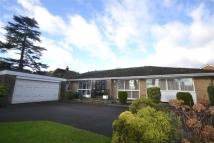 Detached Bungalow for sale in Barnet Road, Arkley...