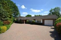 Detached Bungalow for sale in Oaklands Lane, Arkley...