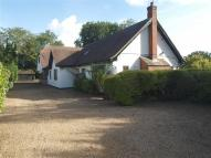 Detached house in Wormley West End...