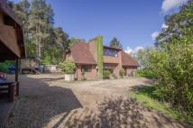 5 bed Detached house in Beacon Hill Road, Ewshot...