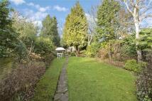 4 bedroom property to rent in Castelnau, London, SW13