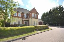 7 bedroom Detached home for sale in Courtgate Close...