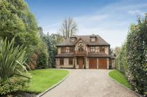 6 bedroom Detached property in Crown Close, Mill Hill...