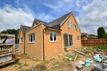 5 bedroom Detached house for sale in Church Walk...