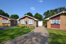 Detached Bungalow for sale in Charlotte Grove...