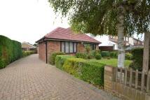 Detached Bungalow for sale in CHEYNE WALK, Horley, RH6
