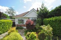 2 bed Detached Bungalow for sale in Sandecotes Road...