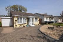 2 bedroom Detached Bungalow in Potters Way...