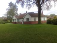 3 bed Detached Bungalow to rent in 283 Bawtry Road...