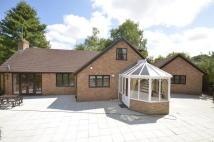 Chalet to rent in New Road...