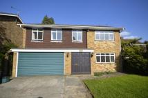 Detached property to rent in Missenden Road...