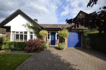 Detached Bungalow to rent in Hyrons Lane, Amersham