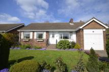 Russell Close Detached Bungalow to rent