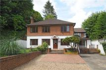 4 bedroom Detached home to rent in Hazlemere