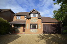Detached home to rent in New Pond Road...