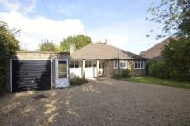 Detached Bungalow to rent in White Lion Road, Amersham