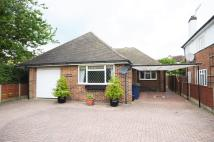 4 bedroom Detached Bungalow to rent in Chiltern Avenue, Amersham