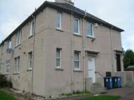 Flat to rent in Macindoe Crescent...