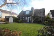 3 bed Detached property in Thornton Crescent...