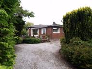 Detached Bungalow in The Lydiate...