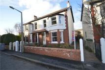 semi detached property to rent in Newton Park Road, Newton...