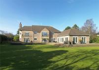Detached house for sale in 'Eden Roc', Thorsway...