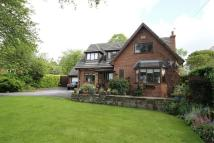 Detached house to rent in Delavor Road, Heswall.