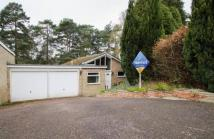 Detached property for sale in Wendover Drive, Frimley...