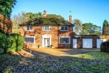 Detached home for sale in Crawley Drive, Camberley...