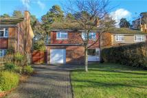 Detached property for sale in Goldney Road, Camberley...