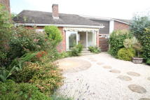 3 bed Detached Bungalow in Knowland Drive...