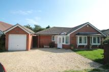 Detached Bungalow in STOPPLES LANE, Hordle...
