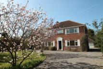 Detached property in ROOKES LANE, Lymington...