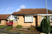 1 bed Semi-Detached Bungalow to rent in Michaelwood Close...