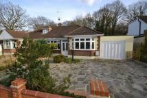 Semi-Detached Bungalow for sale in The Avenue, Highams Park