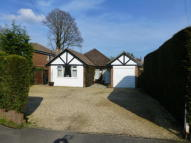 3 bedroom Detached Bungalow for sale in Pond Croft, Yateley, GU46
