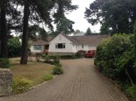 Detached Bungalow to rent in LINKS ROAD, Poole, BH14