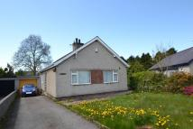 3 bedroom Detached Bungalow in 8 Cae Cilmelyn...