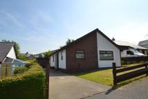 Detached Bungalow for sale in Hafod Lon, Rhiwlas...
