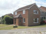 Link Detached House in Must be viewed!! FOUR...