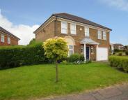 4 bedroom Detached property for sale in Skelton Close...