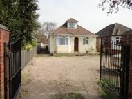 4 bed Detached Bungalow in Barton Road, Luton...